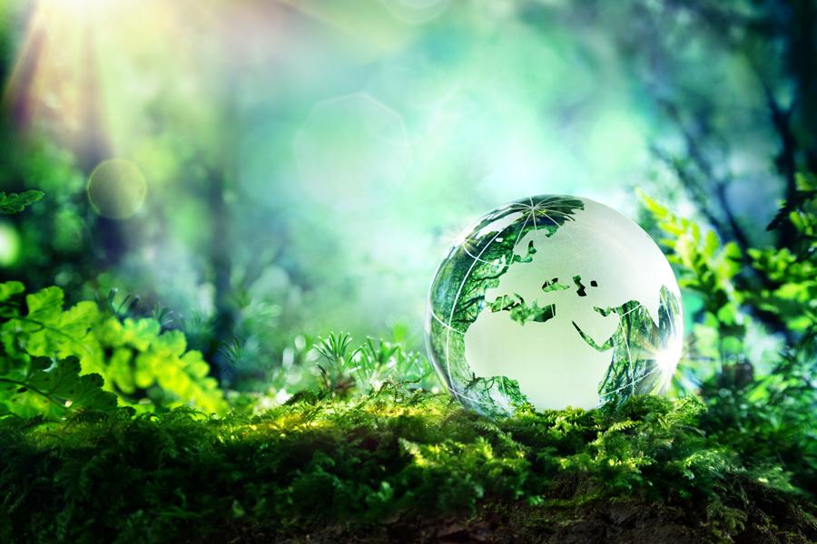 bonifiche ambientali roma